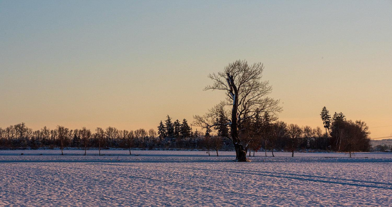 Winter um Altw_010921_VB_20